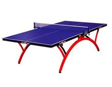 红双喜(小彩虹)乒乓球台T2828